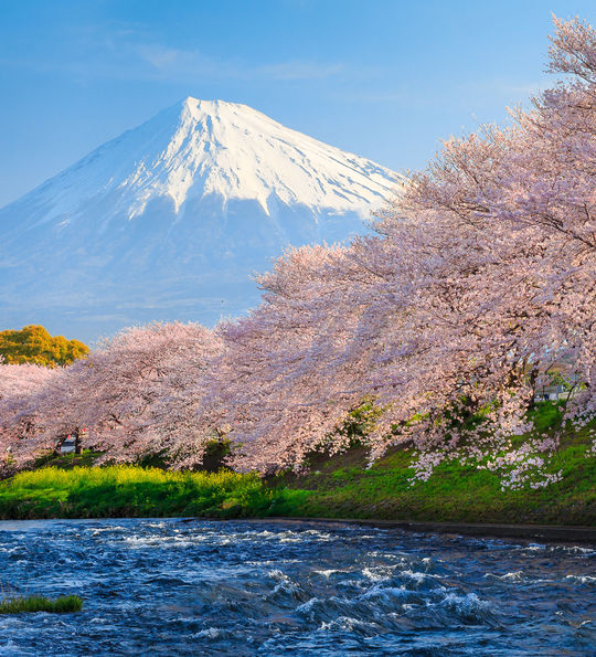 Mt Fuji, Hakone