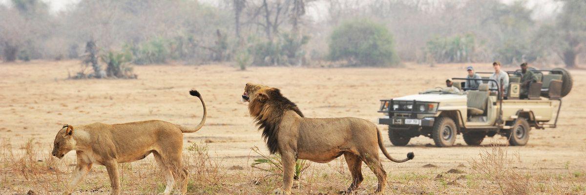 Chiawa Camp, Lower Zambezi