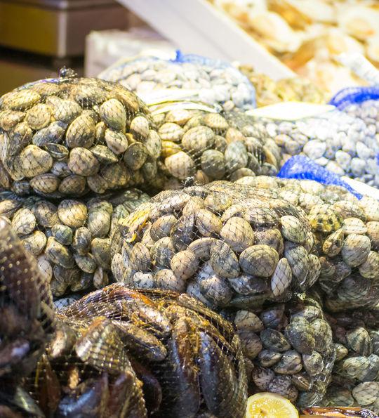 Chioggia fish market