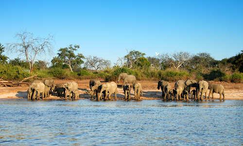 Chobe River, Botswana, Africa