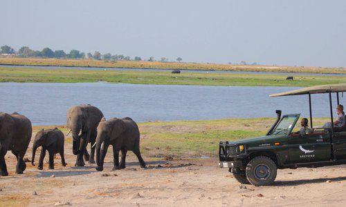 Chobe Under Canvas, Chobe National Park