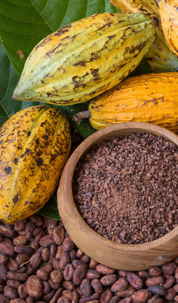 Cocoa Bean Production