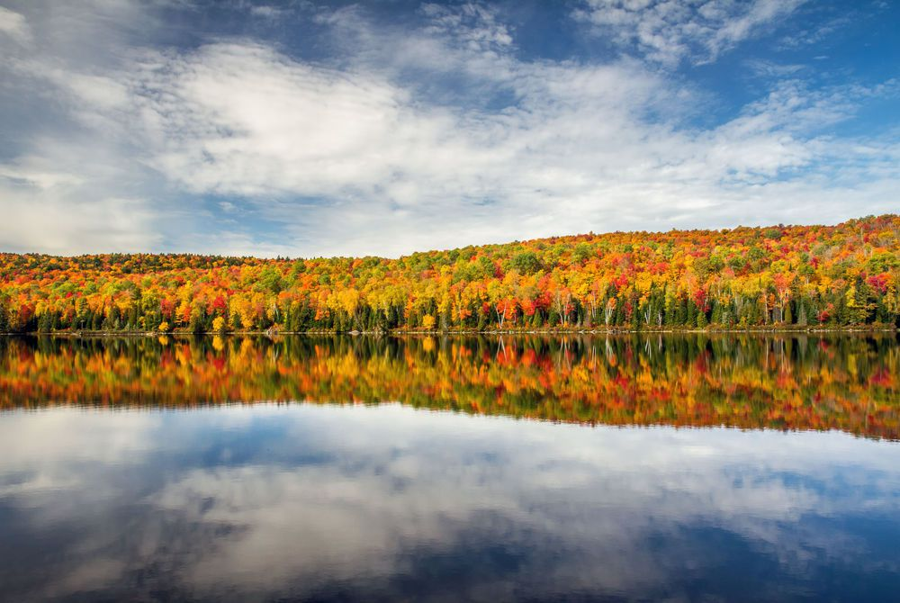 Fall in Quebec
