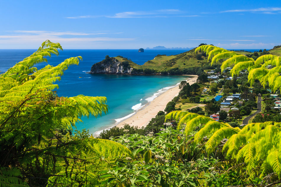 Road and golden beach on New Zealand's Coromandel Peninsula
