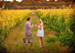 Couple in a vineyard, Margaret River