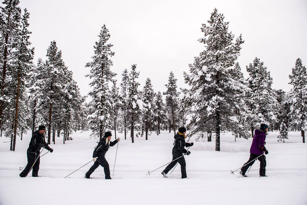 Cross-country skiing excursion, ICEHOTEL (Credit: Markus Alatalo)
