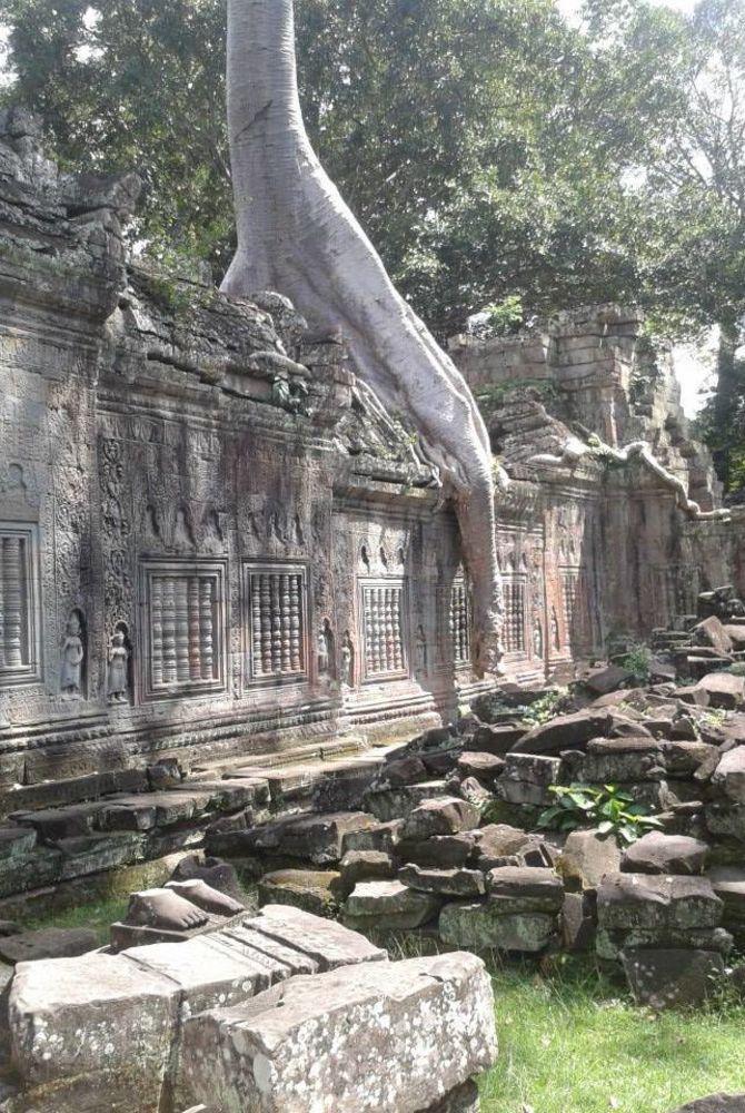 Dan - Cambodia - Angkor Wat