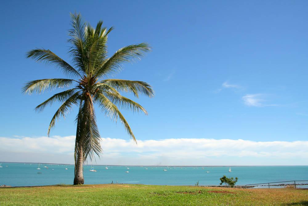 Darwin's bay
