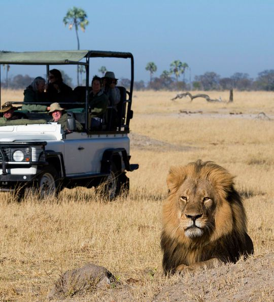 Davison's Camp, Hwange National Park, Zimbabwe