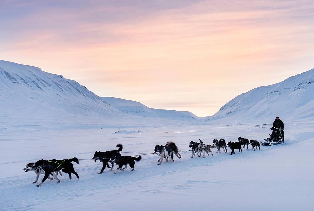 Dogsledding (Credit: Agurtxane Concellon/Hurtigruten Svalbard)