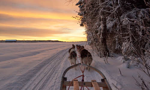 Luleå's top 10 winter excursions