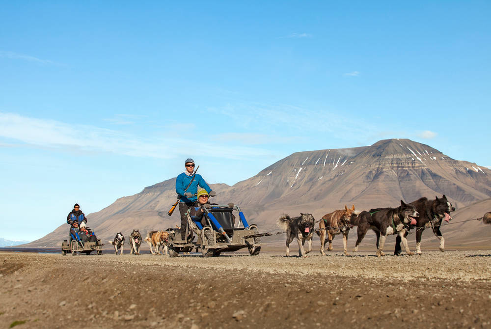 Dogsledding on wheels in Svalbard