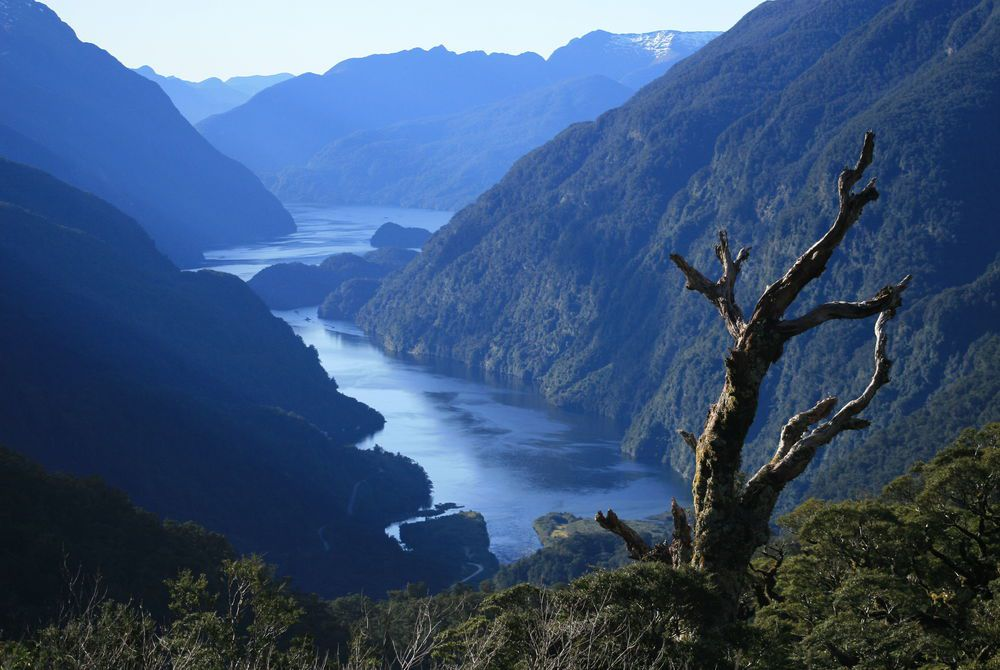 Doubtful Sound, Fiordland National Park