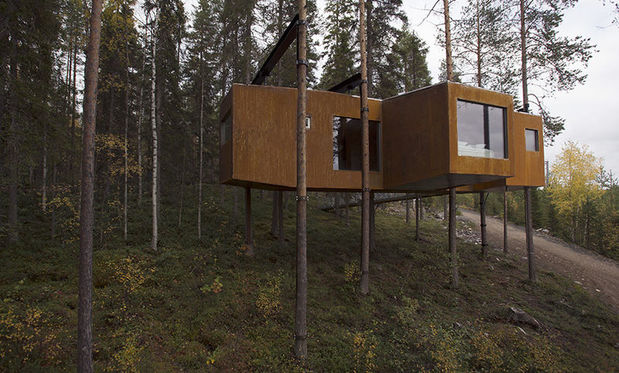 Dragonfly Room, Treehotel in Swedish Lapland