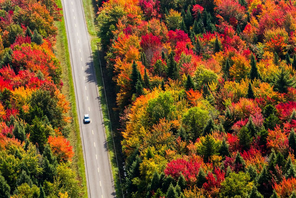 Driving through Québec, Canada