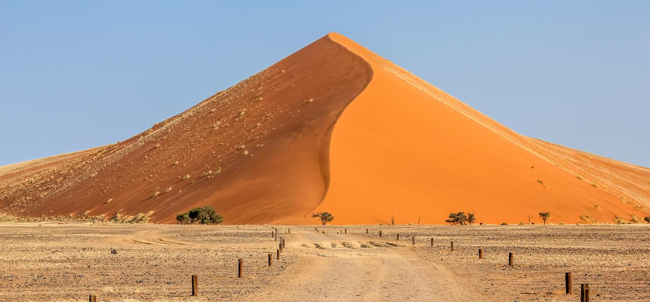 Dune Forty, Namib Desert