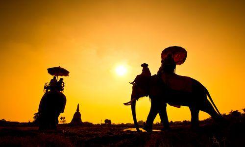 Elephant Ride, Cambodia