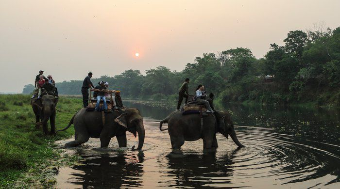 Elephant Safari, Kasara Resort, Chitwan National Park