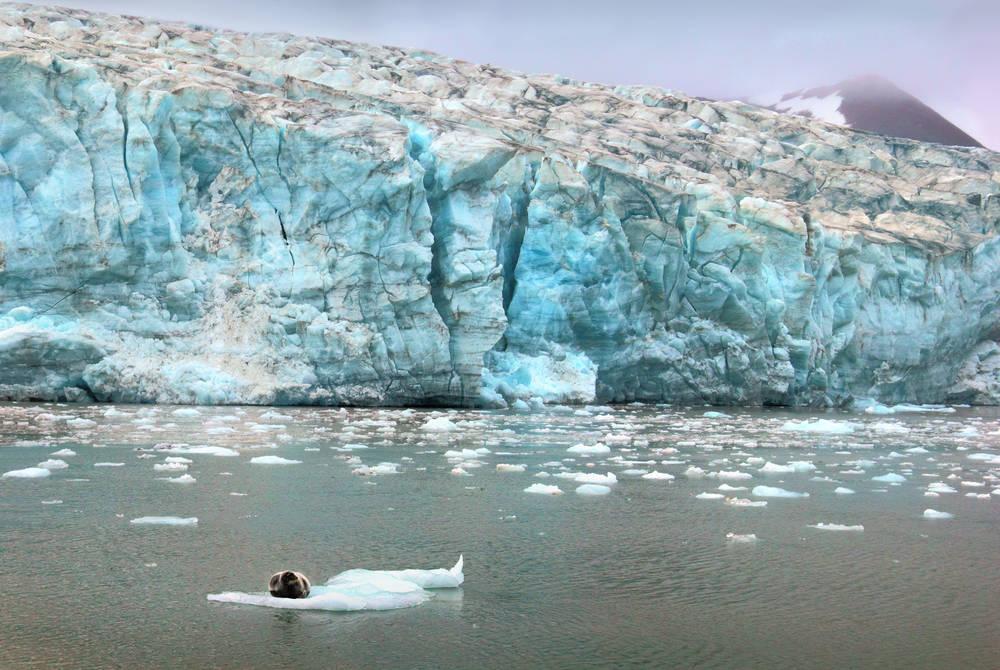 Esmark Glacier, Isfjorden