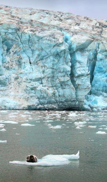 Esmark Glacier, Isfjorden, Svalbard