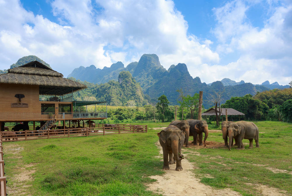 Elephant Hills Camp, Khao Sok National Park, Thailand
