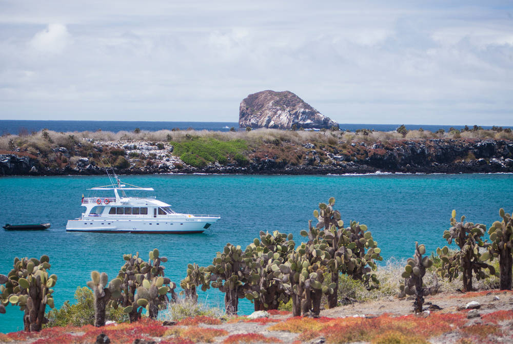 Boat trip, Puerto Ayora, Galapagos