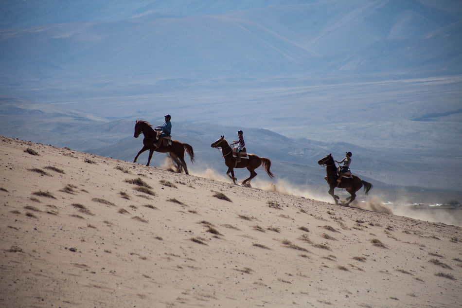 Horse riding, explora Atacama