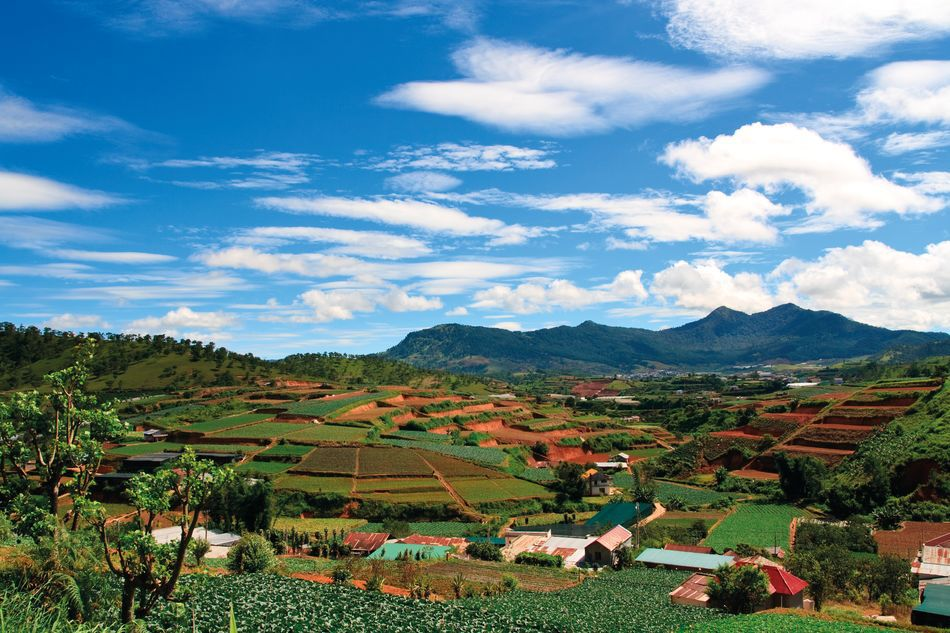 Farm in the Highlands, Dalat, Vietnam