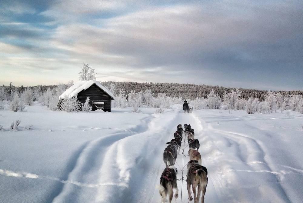 Husky sledding, Fjellborg Arctic Lodge