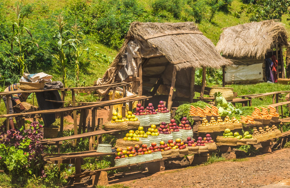 Madagascan fruit stall