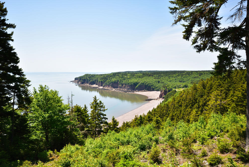 Coast and forests at Fundy National Park