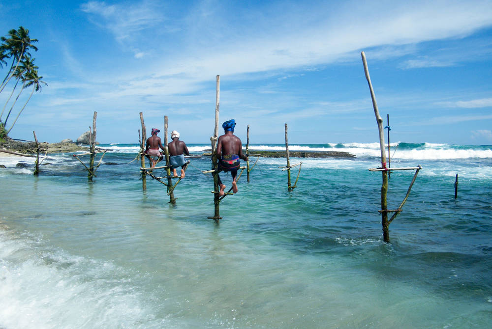 Galle Stilt Fishermen