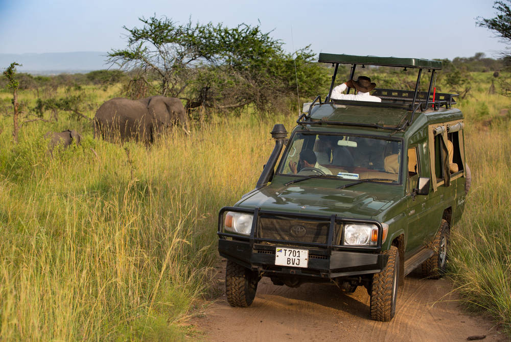 Game drive, Elewana Serengeti Migration Camp