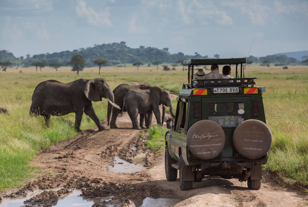 Game drive, Elewana Serengeti Pioneer Camp
