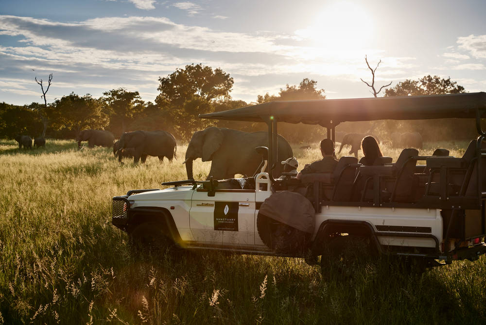 Game drive, Sanctuary Chobe Chilwero, Botswana