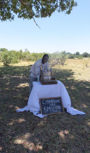 Game drive refreshments, Botswana