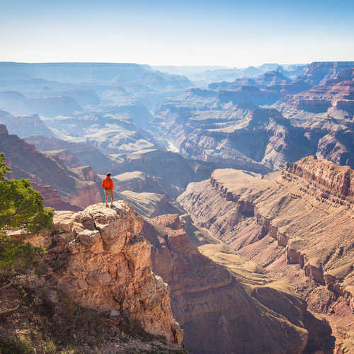 Discover the USA's wild side in 2022