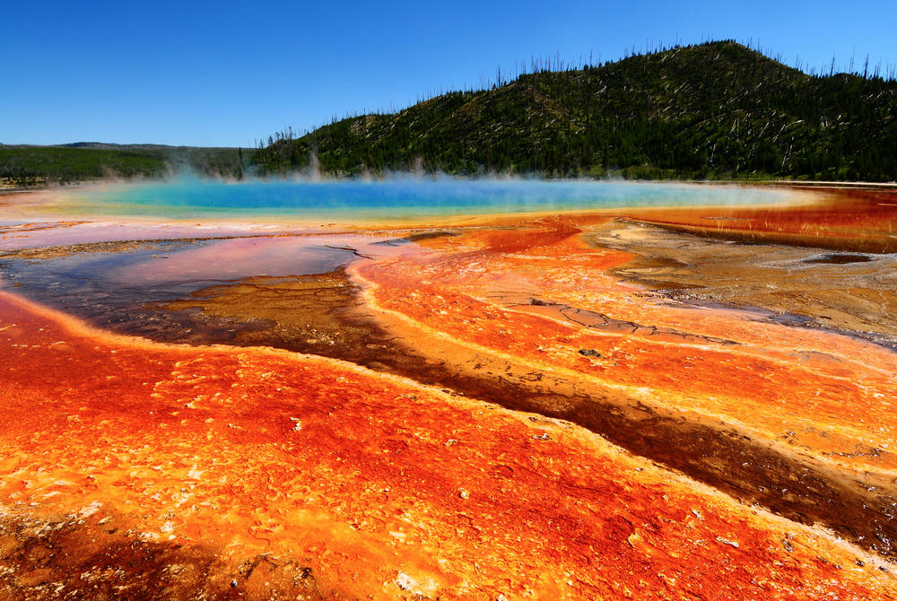 Geyser at Yellowstone National Park in Wyoming
