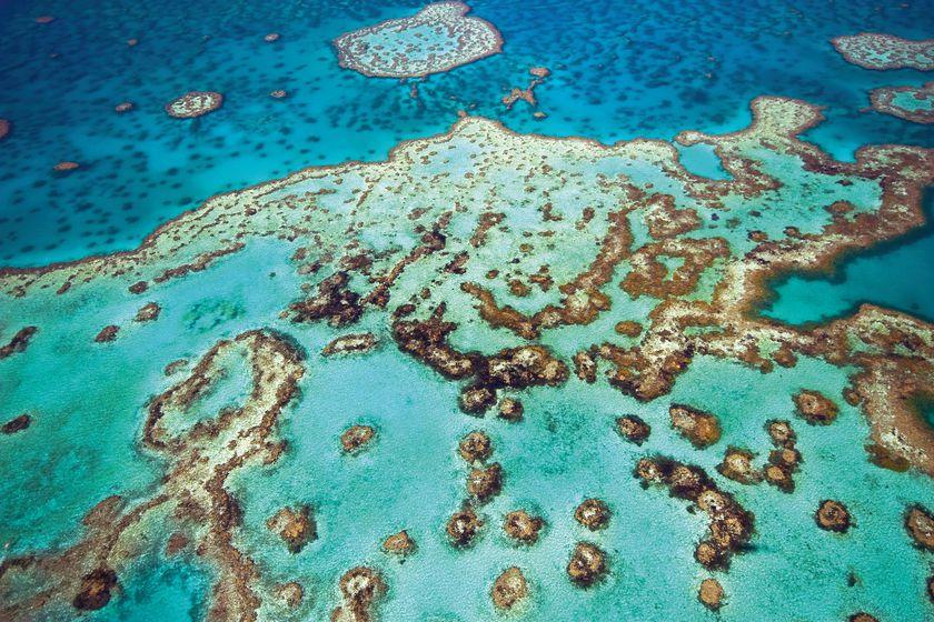 Australia New Zealand Cruises The Luxury Cruise Company - Cruises to australia