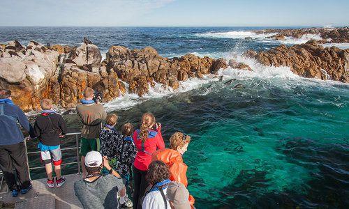 Grootbos, Hermanus, Whale Coast