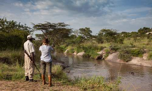 Grumeti River bush walk, Elewana Serengeti Migration Camp