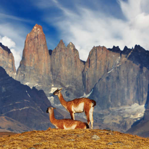 Discover the wonders of Chile