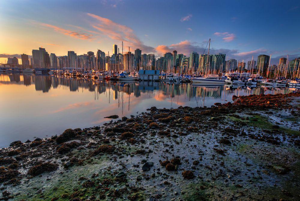 Halifax harbour at sunset