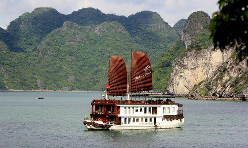 Halong Violet, Vietnam