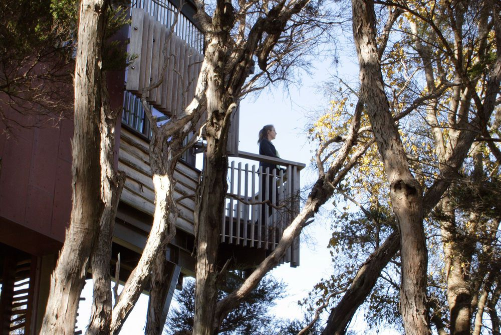 Hapuku Lodge treehouse balcony, New Zealand
