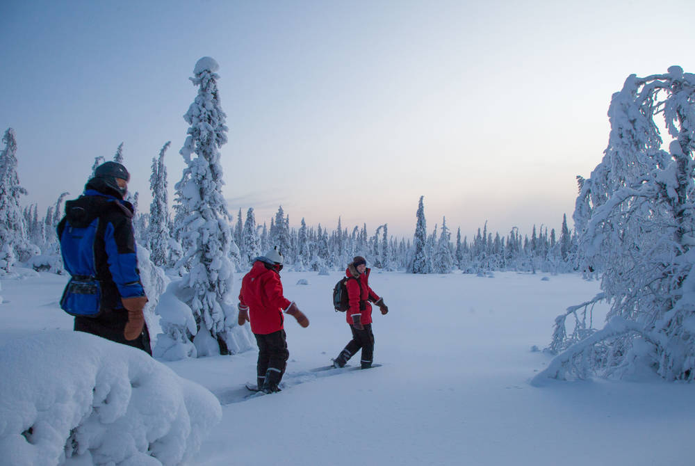 Snowshoeing at Harriniva, Finland