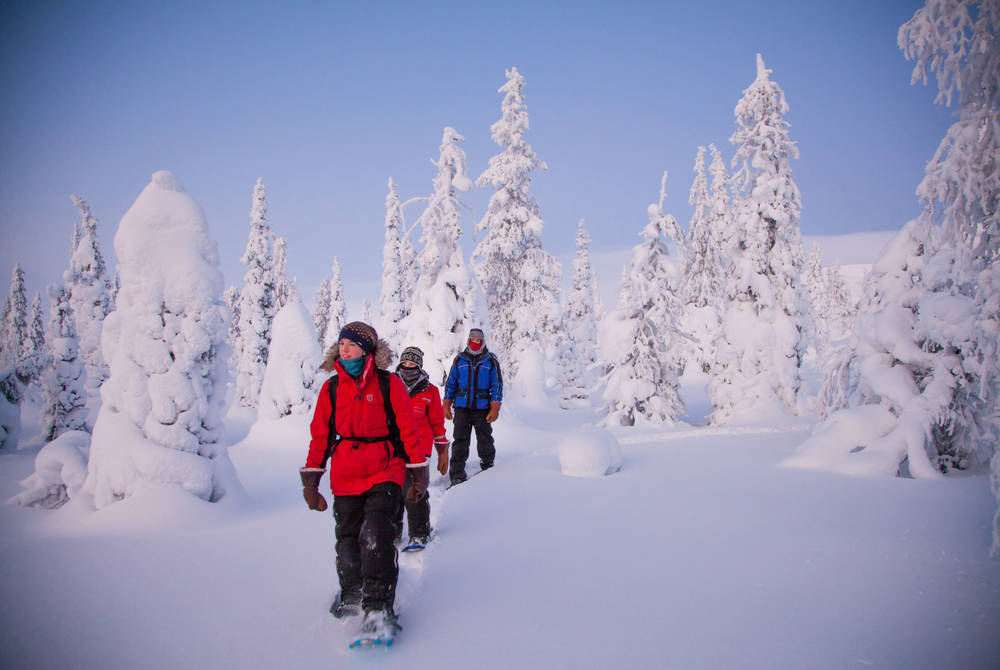 Snowshoeing excursion