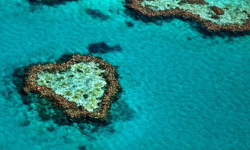 Heart Shaped Reef, Great Barrier Reef