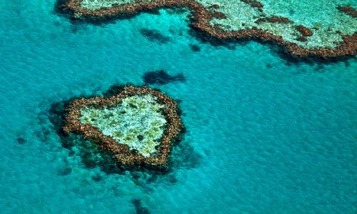 Heart Shaped Reef, Great Barrrier Reef