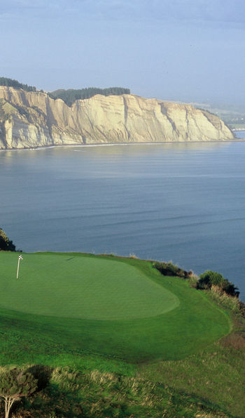 Hole 15, The Farm at Cape Kidnappers